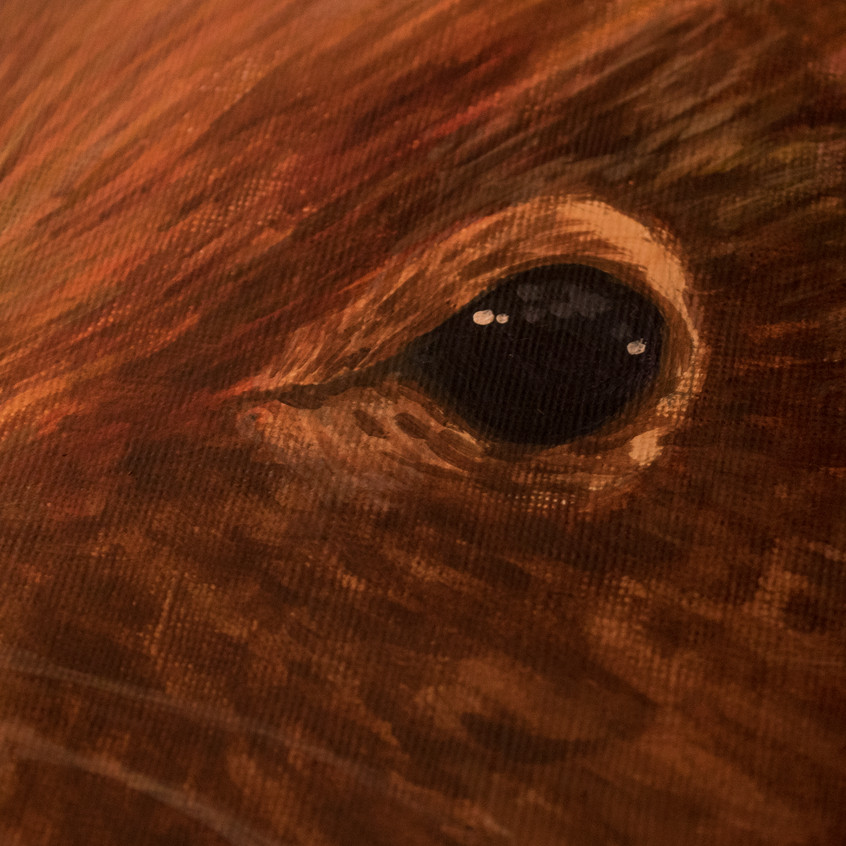 Latest Artwork_ Red Squirrel _ 03
