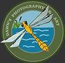 Dawns photography & Art  Dragonfly Logo