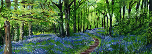 Bluebell Woods Print on Canvas