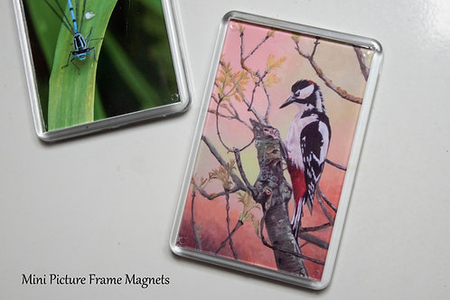 Mini Picture Frame Magnets