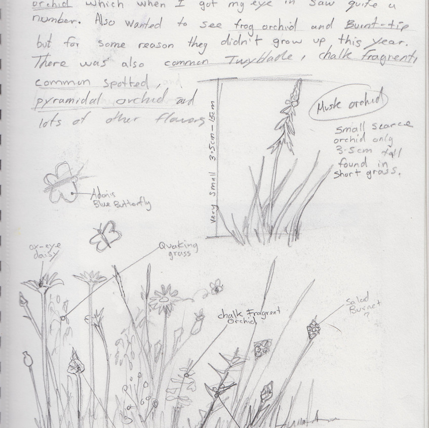 2018 _ Nature Journal _Page_ 20