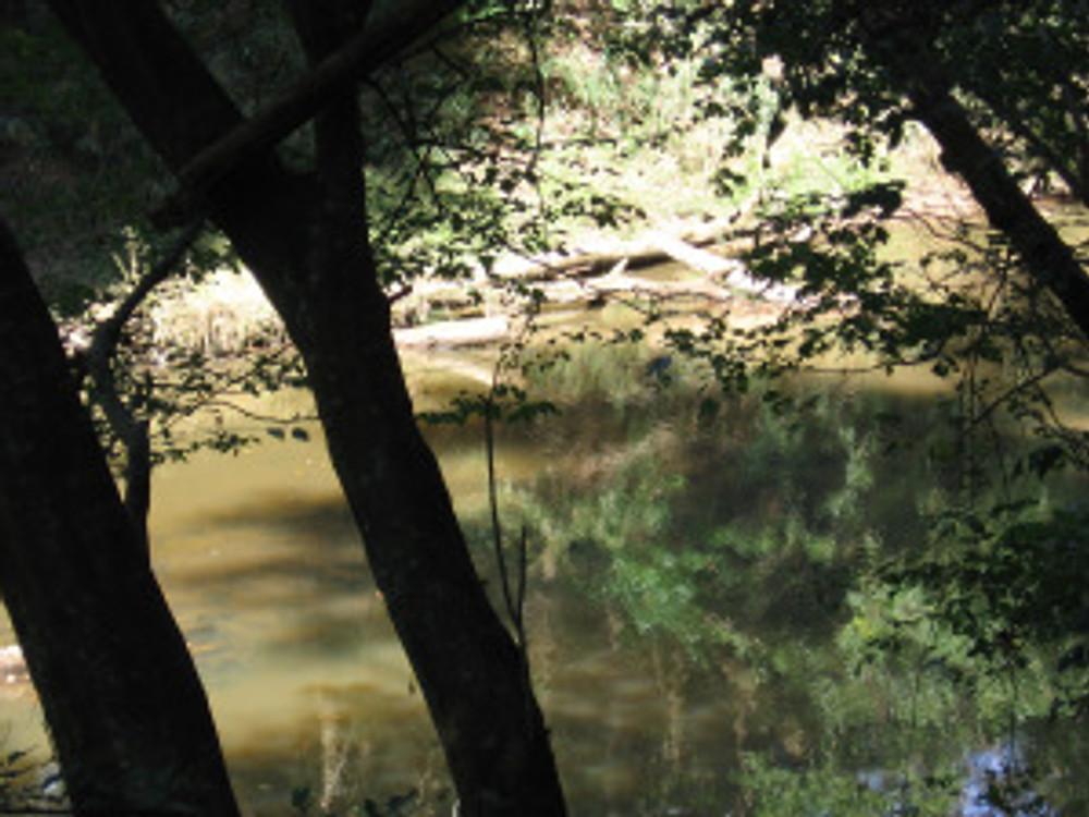Another view of Steven's Creek