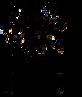 Dale_vulpes_vulpes_logo v2 black.png