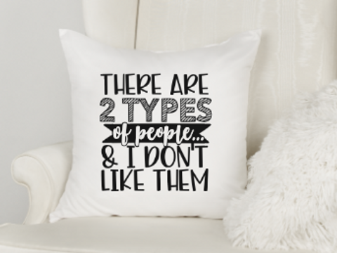 2 Types of People - I Don't Like Them Pillow