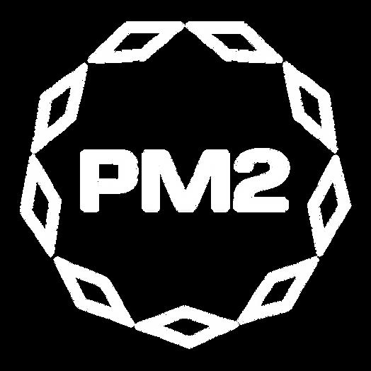 피엠투 로고_벡터 해상도_싱글.png