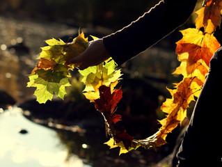 Herbststimmung  ... perfekt für schöne Fotos