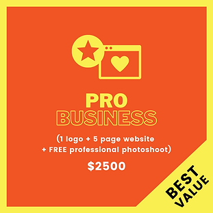 logo-website-package