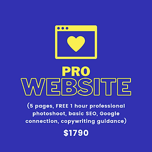 business-logo-website-package.png.png