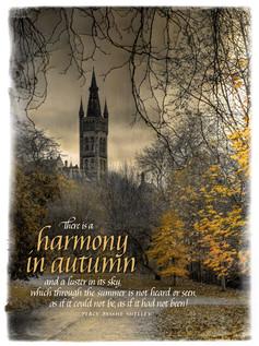 Harmony In Autumn