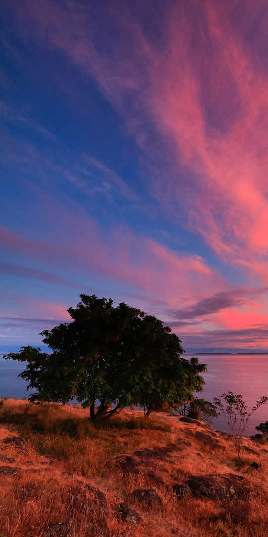 Intense-Pink-Sunset-On-San-Juan-4x8.jpg