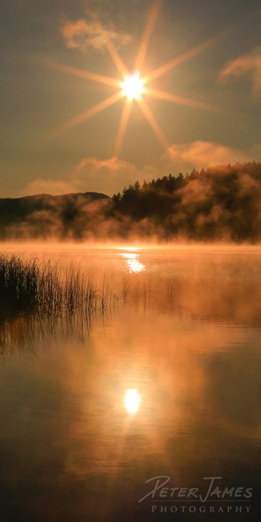 Misty Padden Morning