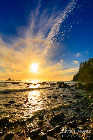 Olympic Coast Beach Photography Prints for Sale