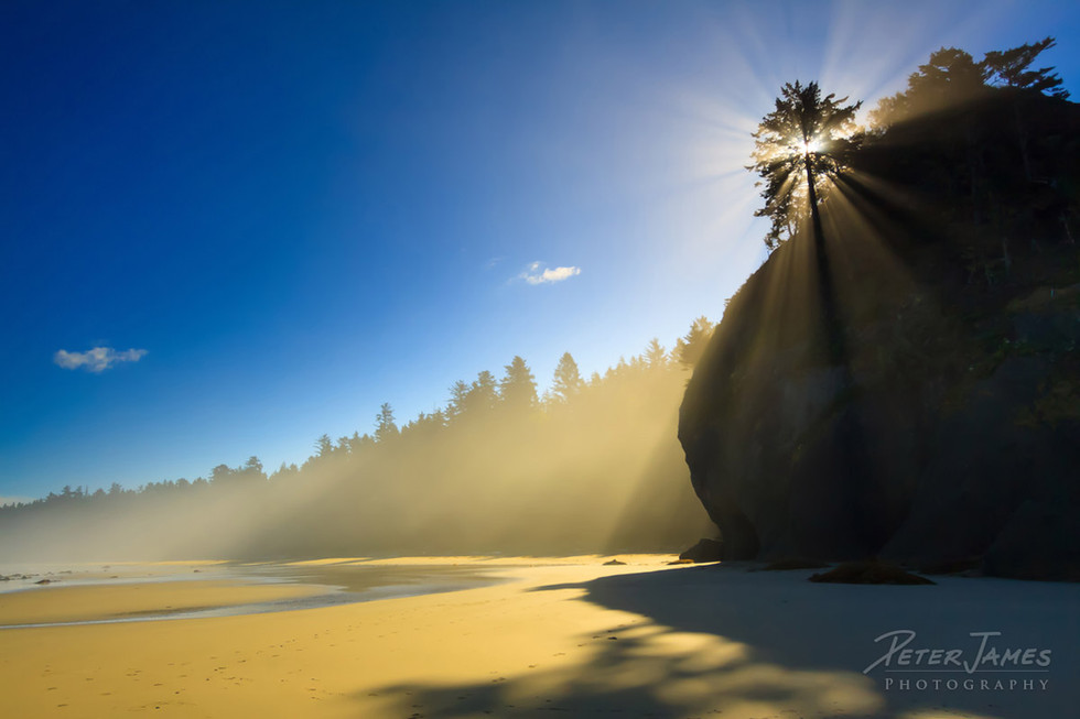 Sunbeams on Shi Shi Beach