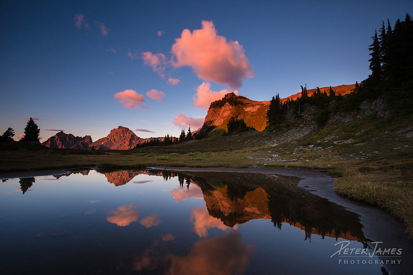 Yellow Aster Butte Pink Sunset