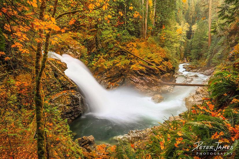 Fall At North Fork Sauk Falls