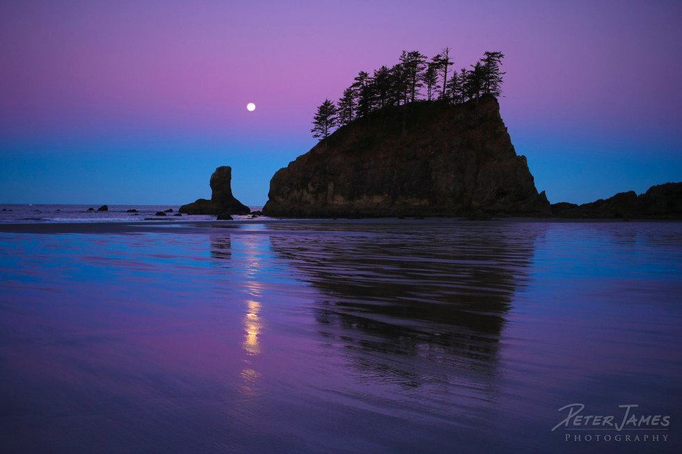Dawn Full Moon Olympic Sea Stack