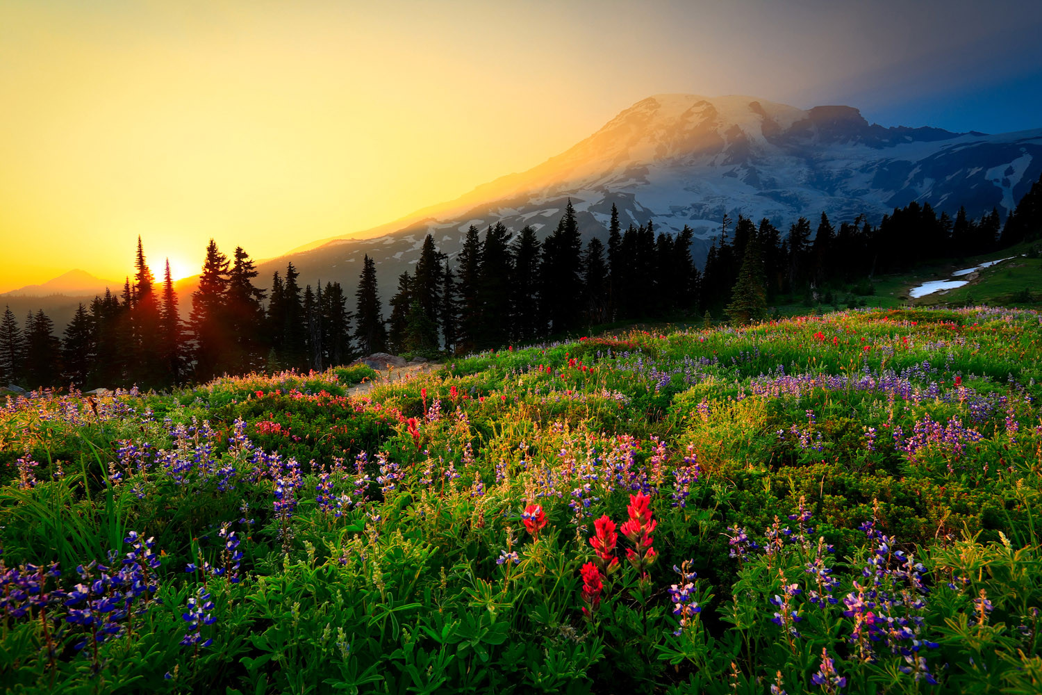 Mount-Rainier-Sunset-In-Paradise.jpg