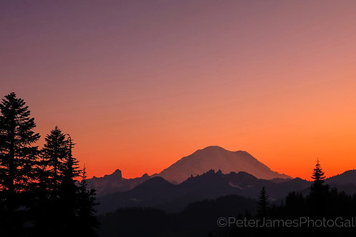Mount Rainier Sunset Afterglow
