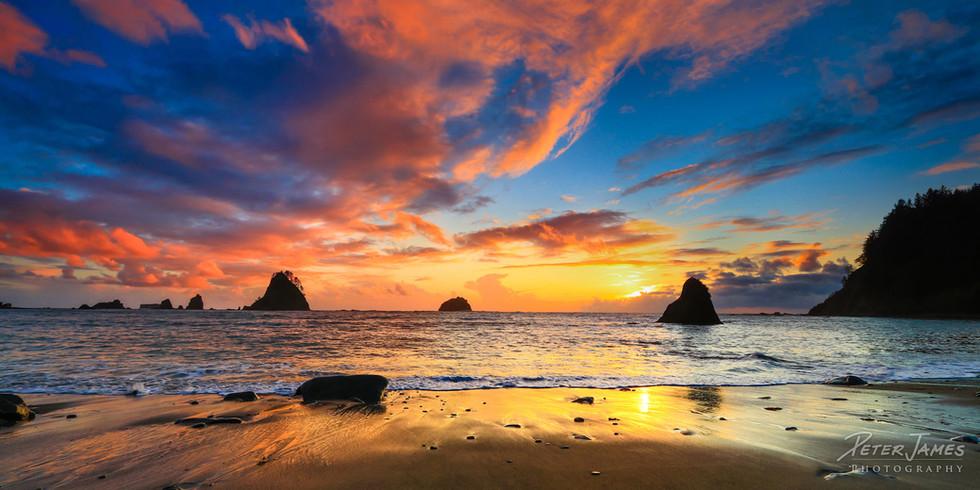 Sublime Olympic Beach Sunset