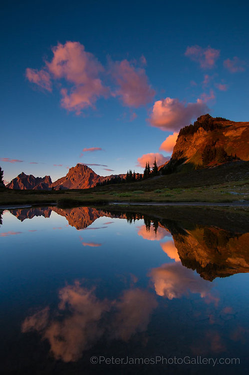 Yellow Aster Butte Mirror