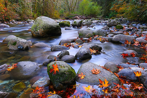 Wallace River in Autumn