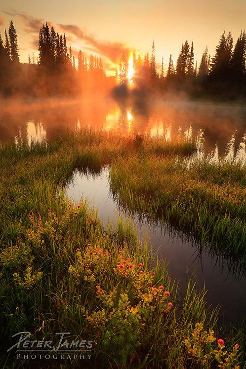 Reflection Lake Inlet At Daybreak