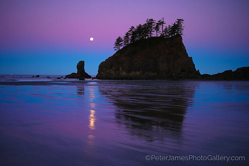 Dawn Full Moon Olympic Seastack