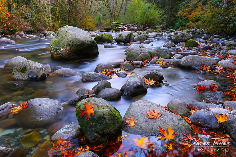 PNW river photography prints for sale