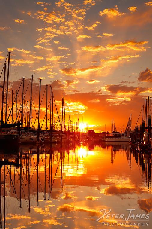 Squalicum Harbor Sunset Magic