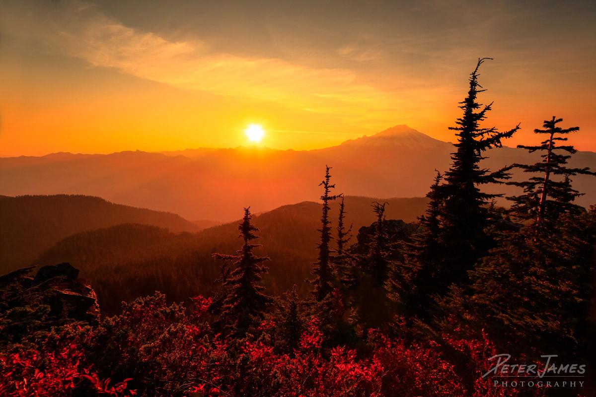 Golden Mount Baker Sunset