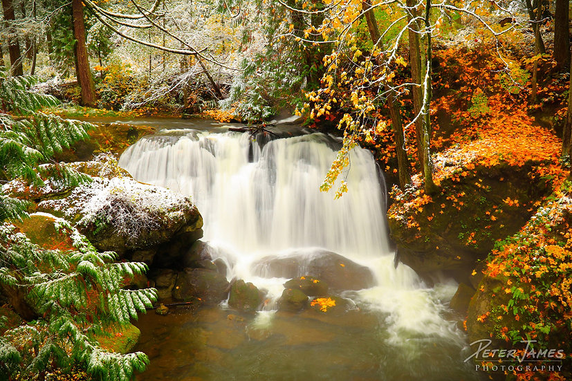 First Snow At Whatcom Falls