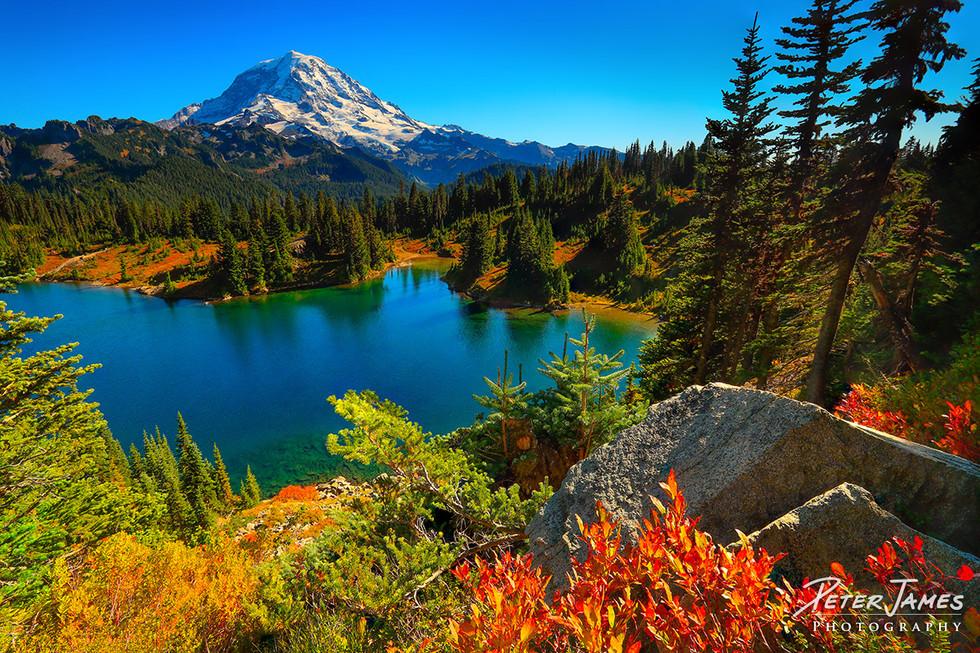 Mount Rainier from Tolmie Peak