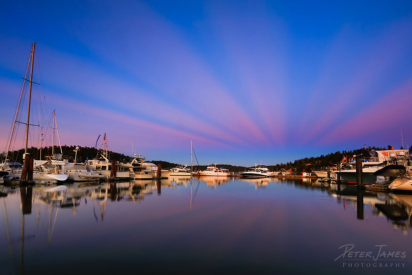 Friday Harbor With Antisolar Rays