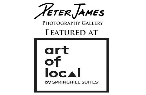 4th Annual Art Night At SpringHill Suites By Marriott Bellingham, WA
