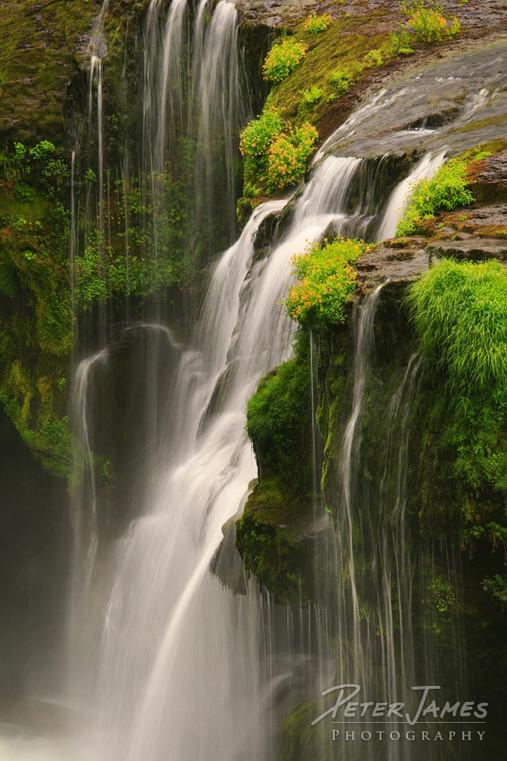 Tranquil Southern Washington Waterfall