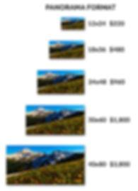 Panorama Metal Prints