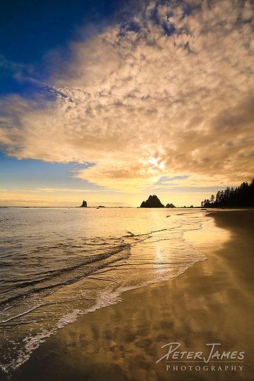 Toleak Point Beach Reflections Metal Print
