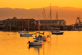 Stock Photo of Sailboats in Fairhaven, Bellingham Bay