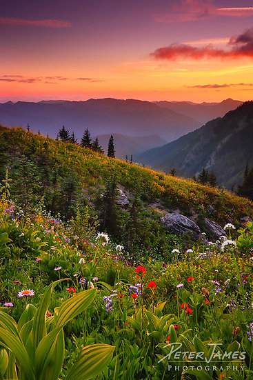 Pacific Northwest mountain photography prints for sale