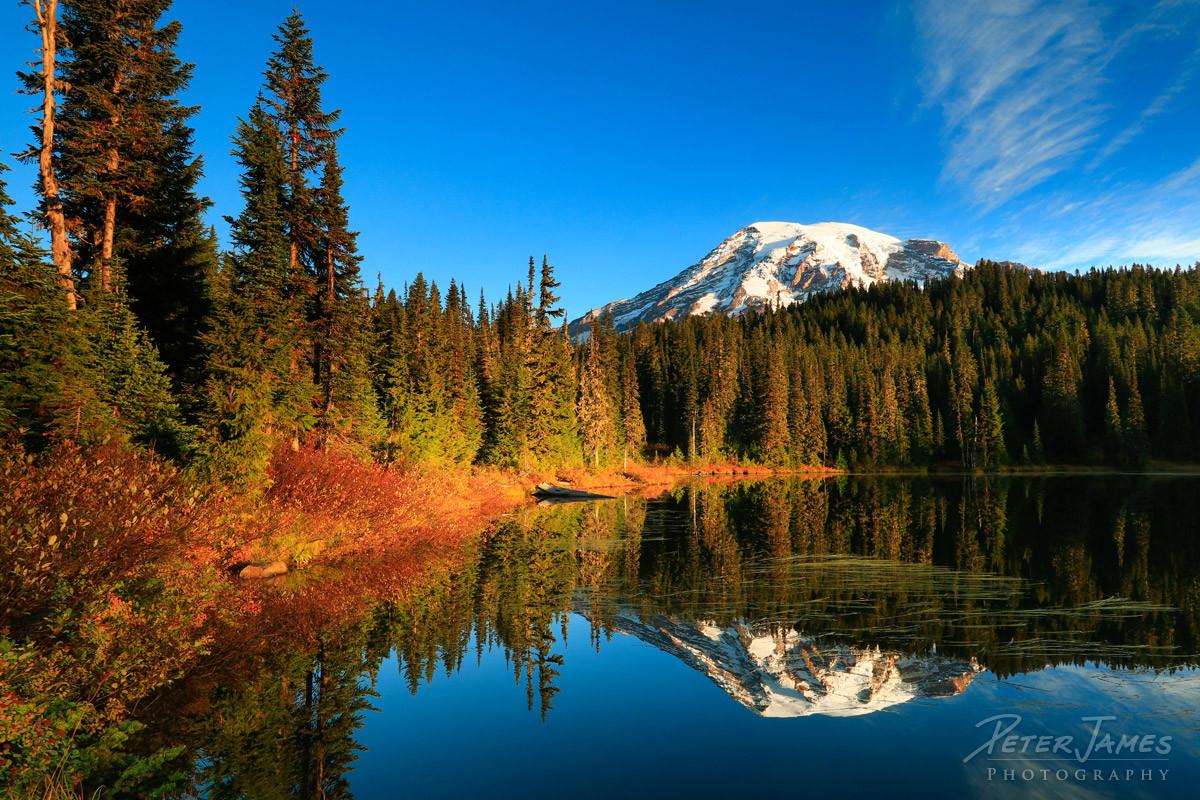 Mount Rainier Warm Still Sunrise