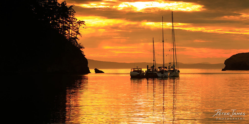Sunset Boats On Bowman Bay