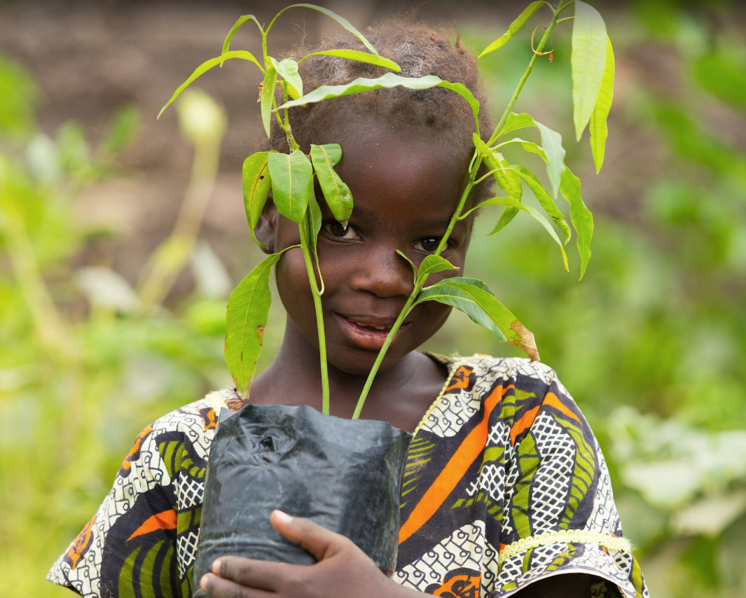 Tanzania - Trees for the Future