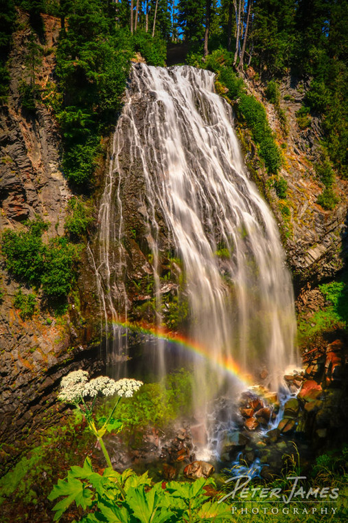 Narada Falls With Rainbow