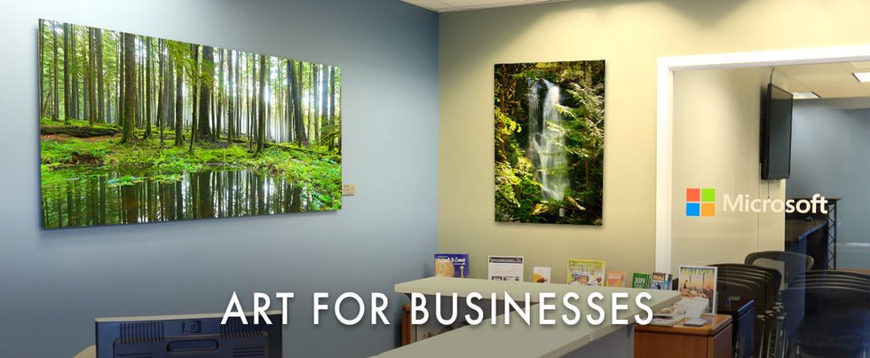 The Best Wall Art for Businesses, Offices, Corporate Campuses, and other Workplaces