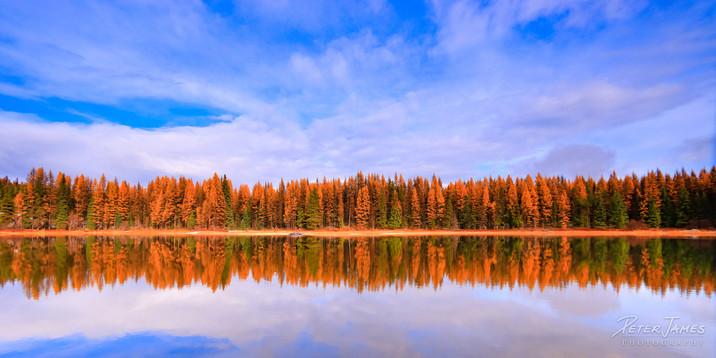 Fall at Frater Lake
