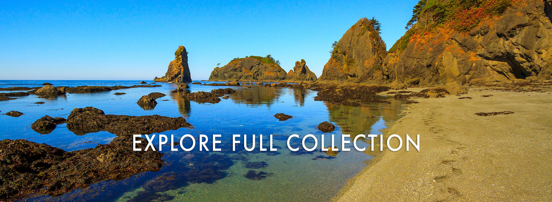Explore Washington State Nature Photography Collections