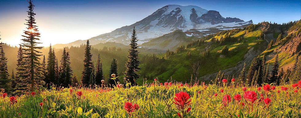 Mt-Rainier.jpg