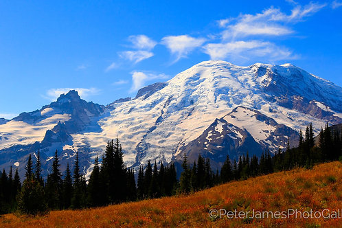 Mount Rainier Fall Afternoon