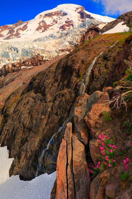 Baker, Glacier, Waterfall, And Wildflowers