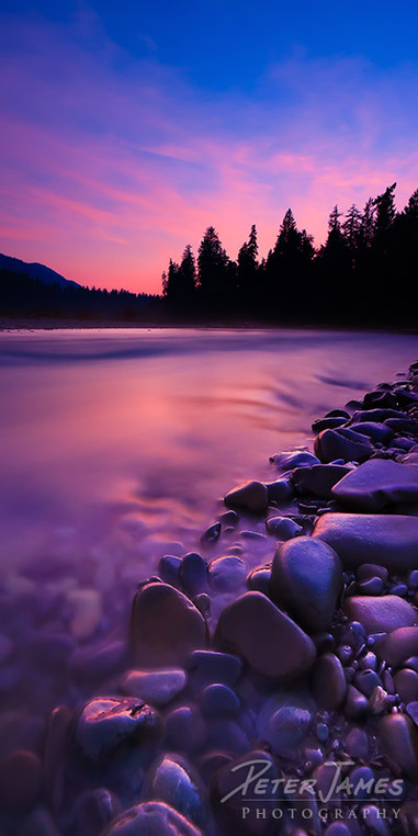Hoh River Rock Purple Glow